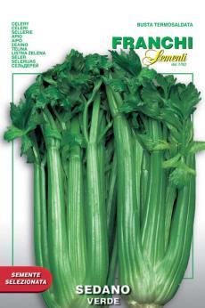 Groene Pascal