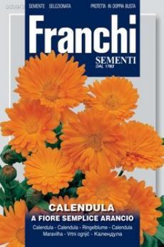 A Fiore Semplice Arancio