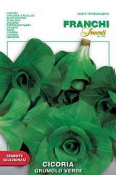 Grumolo Verde